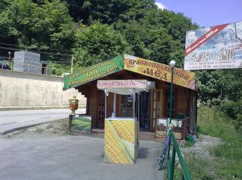 5х6 м, магазин чая и мёда, трасса Сочи-Красная Поляна 002